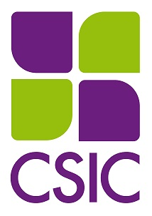 CSIC - Isologotipo - Variaci—n Vertical